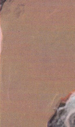 Helen Marie  Vinson