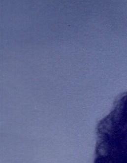 Judith Ann  Lockwood Blakeman