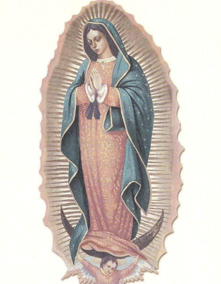 Maria Antonia  Neblina
